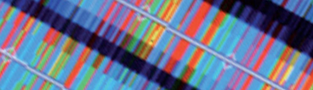 Implémentation des technologies d'analyse cellule unique (single-cell genomics)